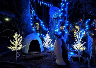 The Zoo has been transformed into a Winter wonderland! Join_38048028694_l